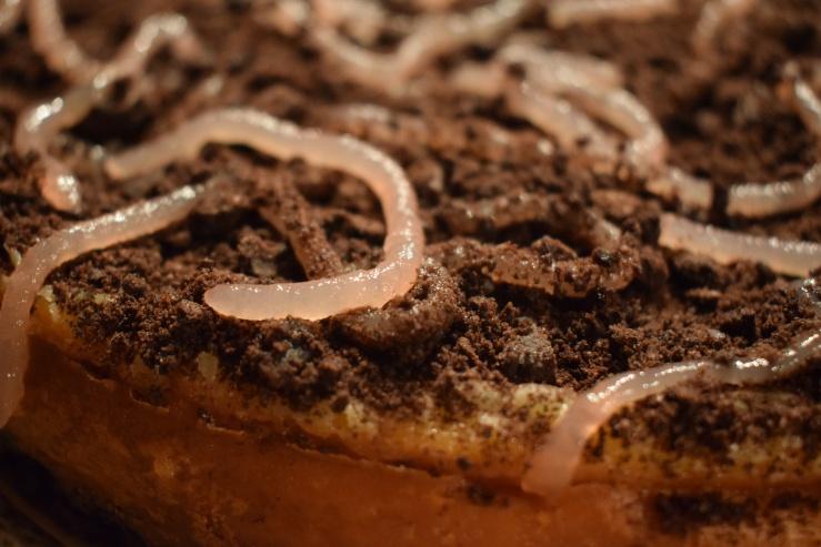 Würmer Kuchen 3